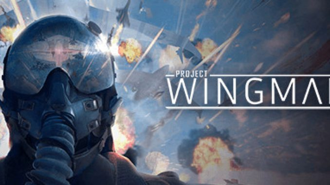 Project Wingman How to Fix PS4/Xbox Controller Connection 1 - steamsplay.com